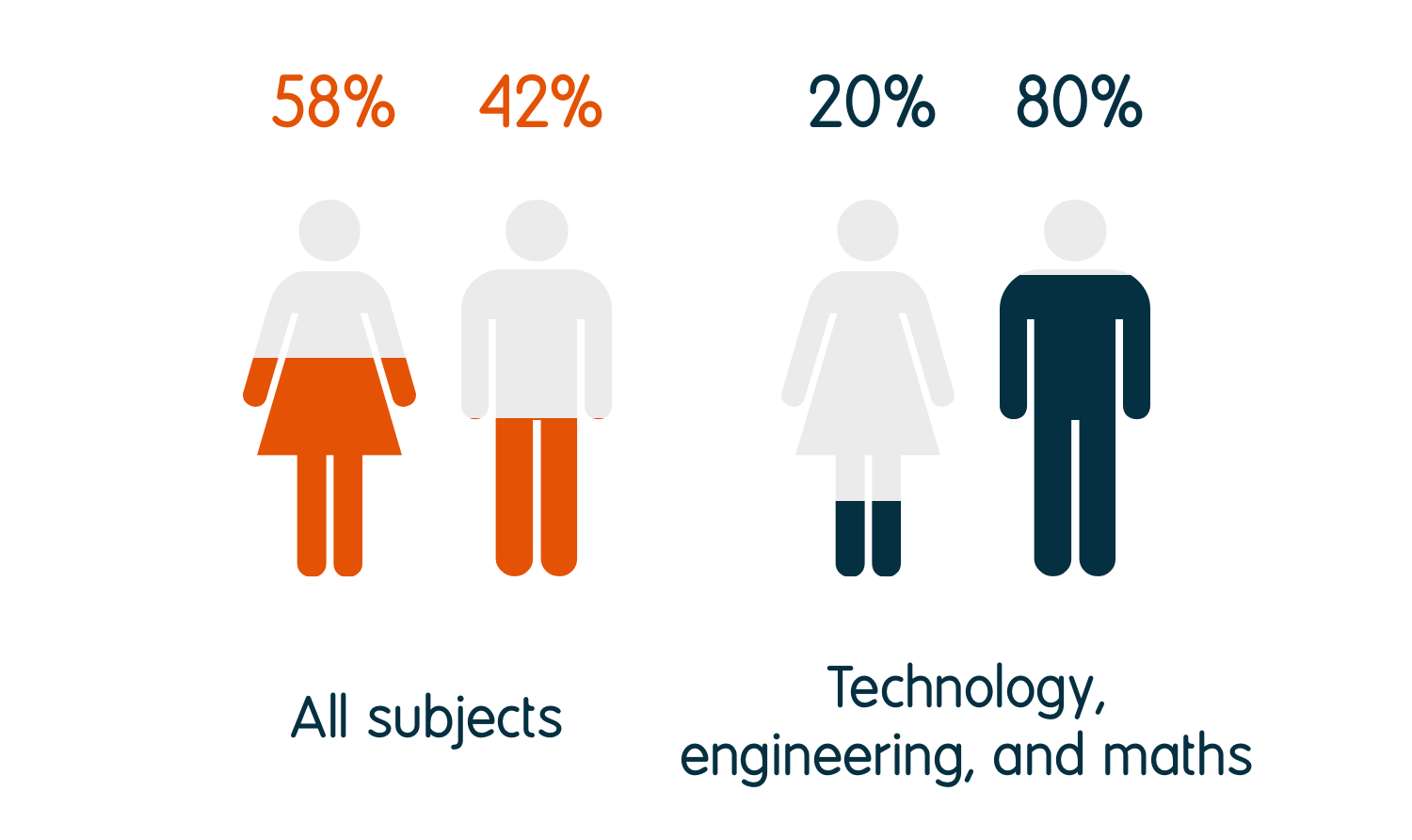 20% of technology, engineering, and maths graduates identify as female and 80% as male, compared to 58% female and 42% male for all graduates.